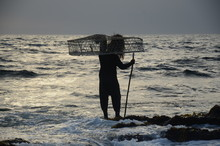 Fisherman Gets The Fishing Bas...