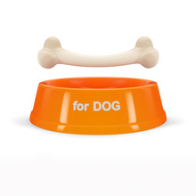 Orange Bowl With Bone For Dog, Isolated On White Background