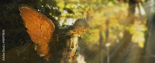 Fotografie, Obraz golden angel in the sunlight (antique statue)