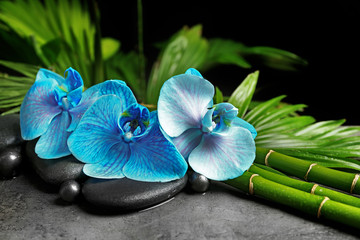 Fototapeta Bambus Beautiful spa composition with blue orchid, bamboo and stones