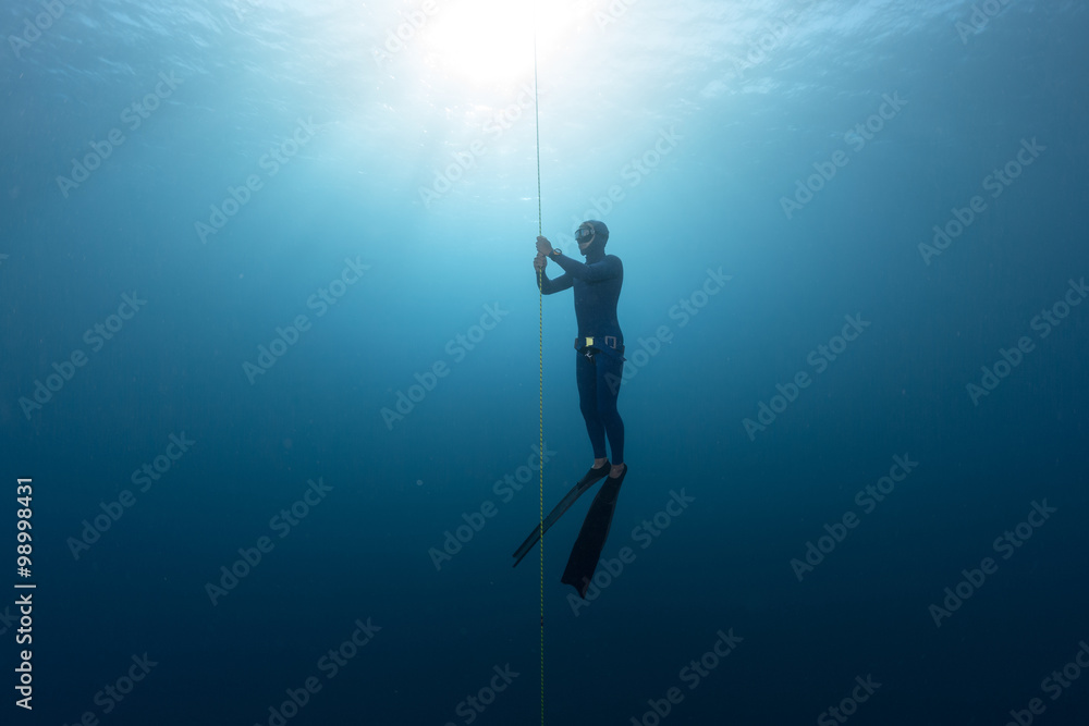 Fototapety, obrazy: Freediver in the sea