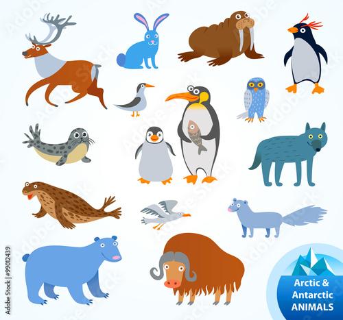 Foto op Aluminium Zoo Set funny Arctic and Antarctic animals