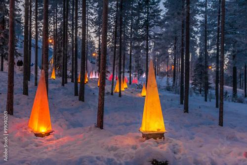 Fotografie, Obraz  Zimní scény s baterkami