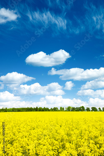 Fotobehang Geel Summer Landscape with Wheat Field and Clouds