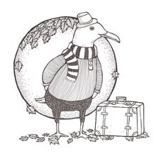Traveled Seagull Coloring Page