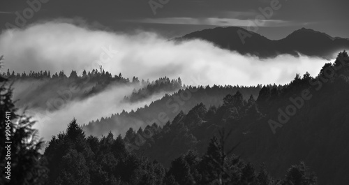 Foto op Aluminium Ochtendstond met mist Morning sun come out from the mountain No.6