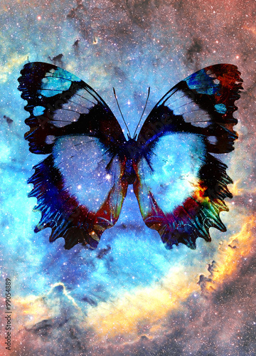 Poster Butterflies in Grunge illustration of a butterfly in cosmic space. mixed media, abstract color background.