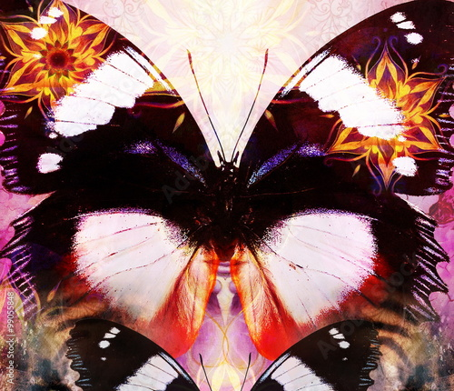 Foto op Plexiglas Vlinders in Grunge Butterfly and oriental ornamental mandala and color abstract background with spots. computer collage.