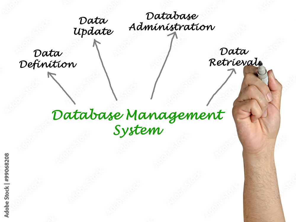 Diagram of database management system poster sold at europosters ccuart Images