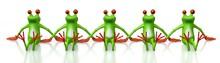 3D Frog Concept