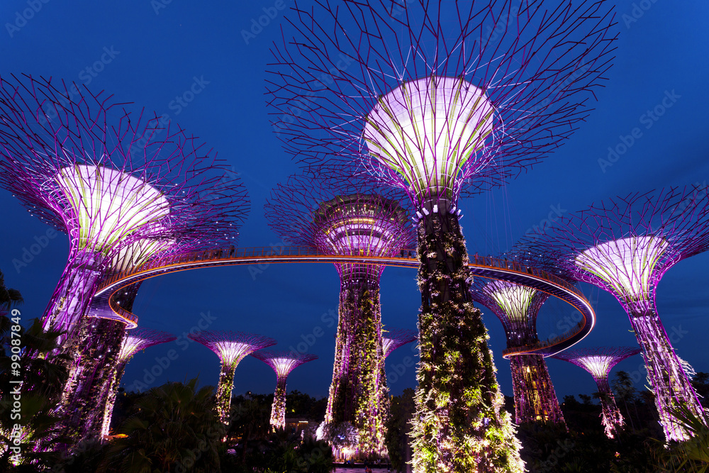 Plagát  The Giant Trees at the Gardens by the Bay in Singapore at twilight
