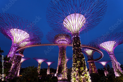 In de dag Singapore The Giant Trees at the Gardens by the Bay in Singapore at twilight