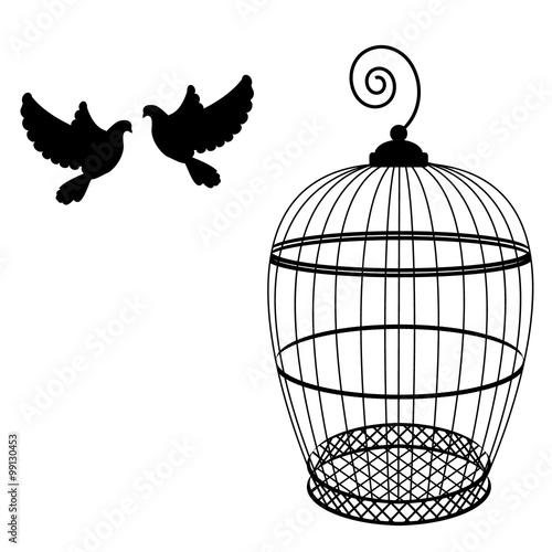 Keuken foto achterwand Vogels in kooien Birdcage and two pigeon
