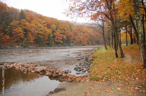 Fotografie, Obraz  Deerfield River in Autumn, Charlemont, Massachusetts