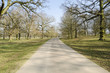 Green English park