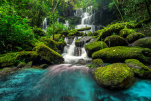 Beautiful Waterfall In Green F...