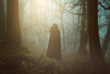 Black Hooded Person In A Surreal Forest