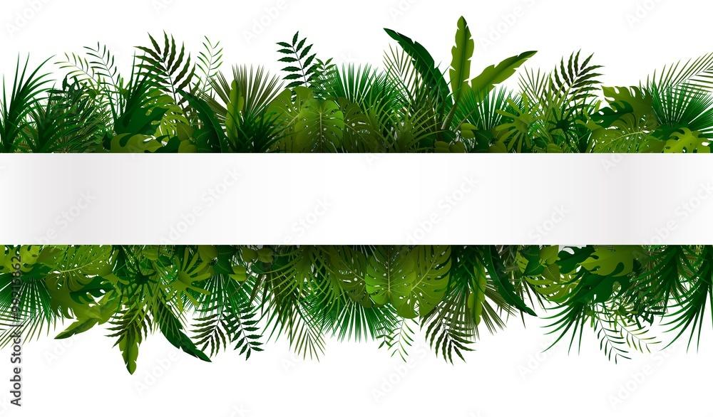 Fototapeta Tropical foliage. Floral design background