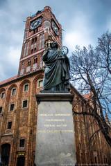 Fototapeta Toruń