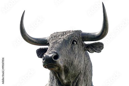 bull on white backgroud