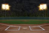 Fototapeta sport - Baseball Stadium