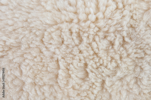 Photo sur Aluminium Sheep wool sheep closeup
