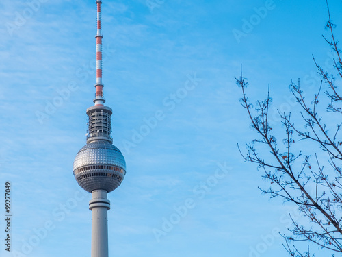 Photo  Berlin Fernsehturm TV Tower and Bare Tree Branches