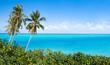 Südsee Paradies mit Palmen und türkisblauem Meer