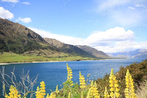 Photo  lake hawea