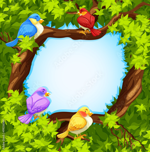 Poster Oiseaux, Abeilles Border design with birds on tree
