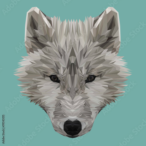 Fototapety, obrazy: Wolf animal low poly design. Triangle vector illustration.