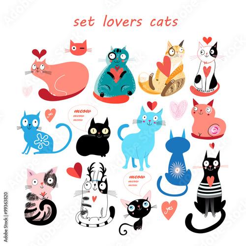 Fényképezés  set of cats