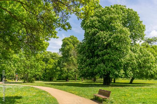 Park im Frühling