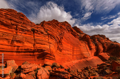 Garden Poster Red Coyote Buttes