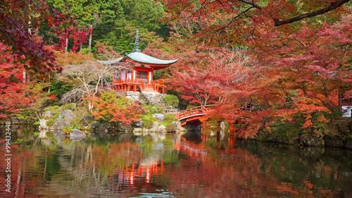 Foto op Canvas Japan Daigoji temple with autumn maple trees