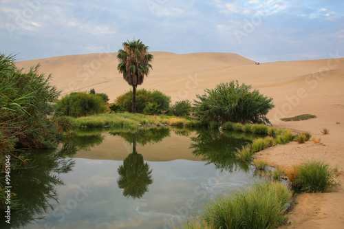 Oasis of Huacachina, Ica region, Peru.