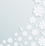 Seamless pattern daisy with leaves on gray background