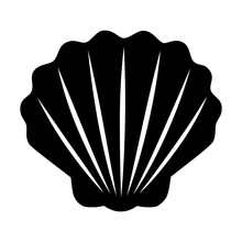 Seashell / Shellfish Flat Icon...