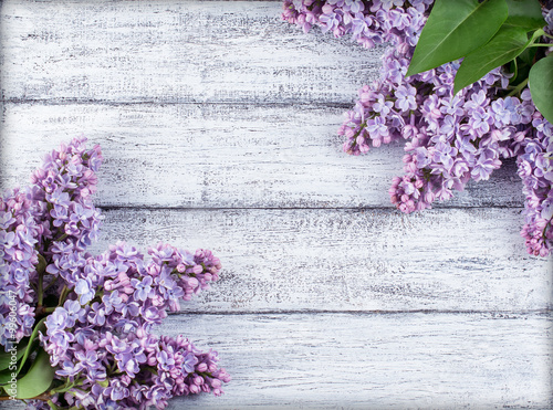Ingelijste posters Lilac Lilac flowers on wooden planks
