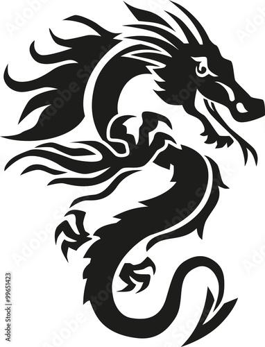 Fotografie, Tablou  Chinese dragon