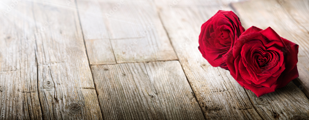 Fototapety, obrazy: Valentines Card - Sunlight On Two Roses In Love