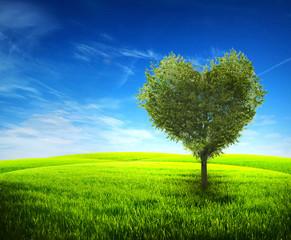 Fototapeta Romantyczny Tree