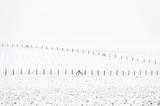 Winter landscape - 99682415