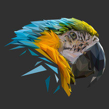 Parrot Low Poly Design. Triangle Vector Illustration.