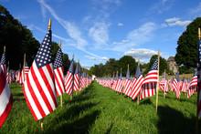 Field Of American Flags ..
