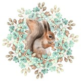 Squirrel and flowers - 99708034