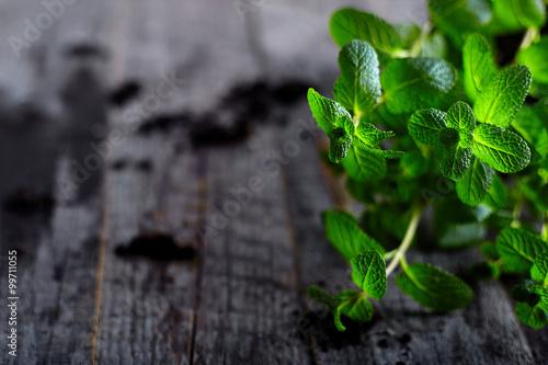 фотография  Pepper mint on old wood background