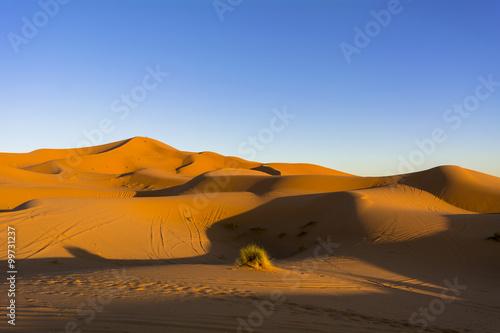 Keuken foto achterwand Rood paars モロッコのサハラ砂漠