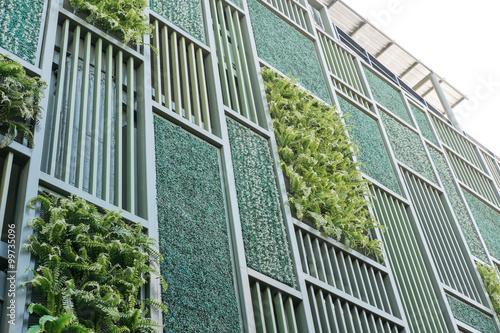 Fotografie, Obraz  Green facade, vertical garden in architecture