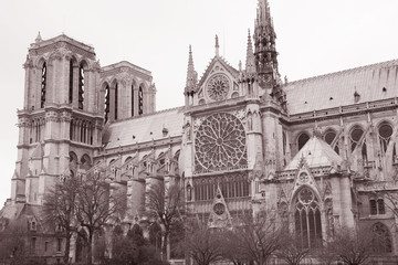 Notre Dame Cathedral in Black and White Sepia Tone in Paris, France